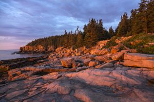 Otter Cliffs, sunrise, Acadia National Park